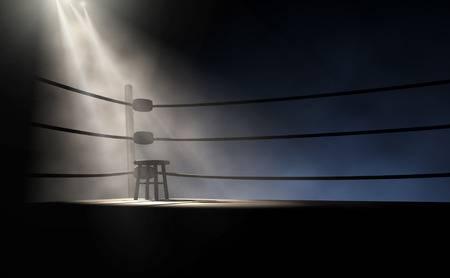 Giù dal ring